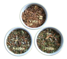 Kapha Ayurveda Tee 100g