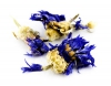 Kornblumenblüten mit Kelch